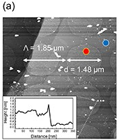 Observation of strong magneto plasmonic nonlinearity in bilayer graphene discs