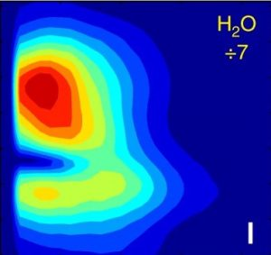 Coupling between intra- and intermolecular motions in liquid water revealed by two-dimensional terahertz-infrared-visible spectroscopy