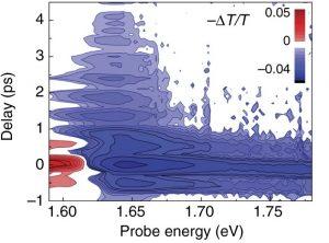 Direct observation of mode-specific phonon-band gap coupling in methylammonium lead halide perovskites