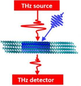 Dynamical Control over Terahertz Electromagnetic Interference Shielding with 2D Ti3C2TyMXene by Ultrafast Optical Pulses
