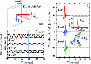 Single-pulse terahertz coherent control of spin resonance in the  canted antiferromagnet YFeO3, mediated by dielectric anisotropy