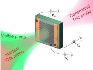 The ultrafast dynamics of photoexcited graphene at different Fermi energies