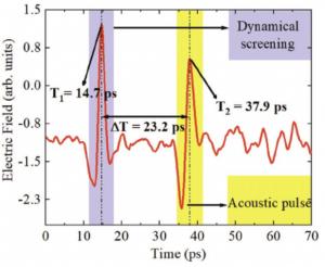 Ultrafast terahertz nanoseismology of GaInN/GaN multiple quantum wells